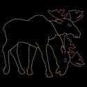 10' Moose