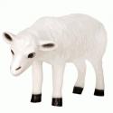 Exclusive Series - Sheep (Head Down)