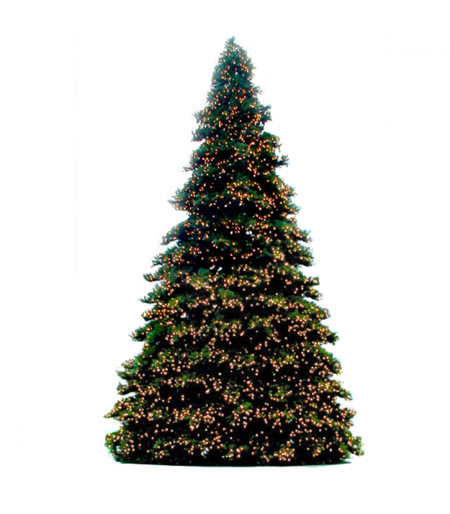 Giant everest branch style tree led bulbs all american for Christmas tree with large bulbs