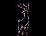 Deer Christmas Light Displays