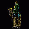 13' Wiseman on Camel