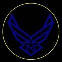12' Air Force Insignia