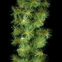 Supreme Authentic Pine Garland